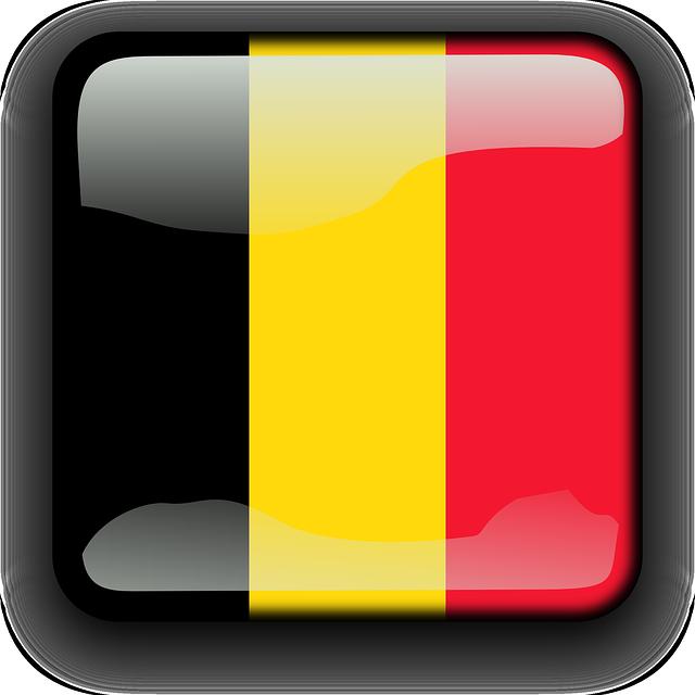 Servicio Voluntario Europeo en Bélgica!