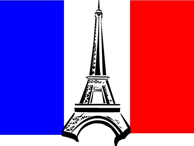Varias plazas de SVE en Francia