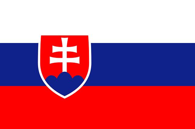 URGENTE - SVE en centro juvenil en Eslovaquia!