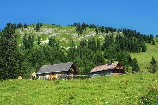 1 oferta de voluntariado europeo en Styria/Austria
