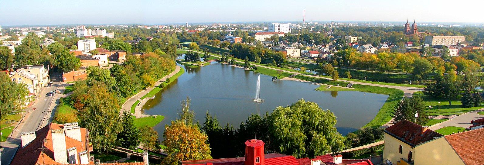 SVE para 10 meses en Lituania!