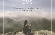 ¿Qué es el EVS?