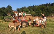 Iduna, Ferrán, Ana, Jennifer, Xavi e Ismael de voluntarios europeos en Croacia este verano