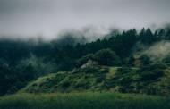 Voluntariado en Rumania sobre naturaleza