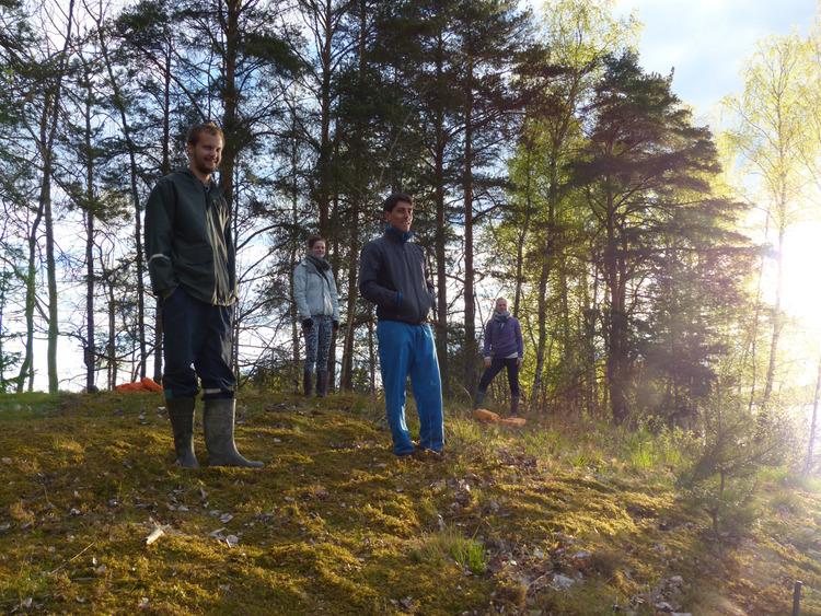 servicio voluntario europeo Finlandia