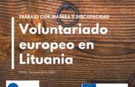 Voluntariado europeo en Litunia para trabajar con la madera