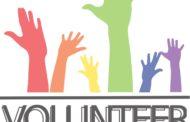 Programas de voluntariado: Opciones