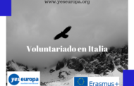 Voluntarios medioambiente en Italia