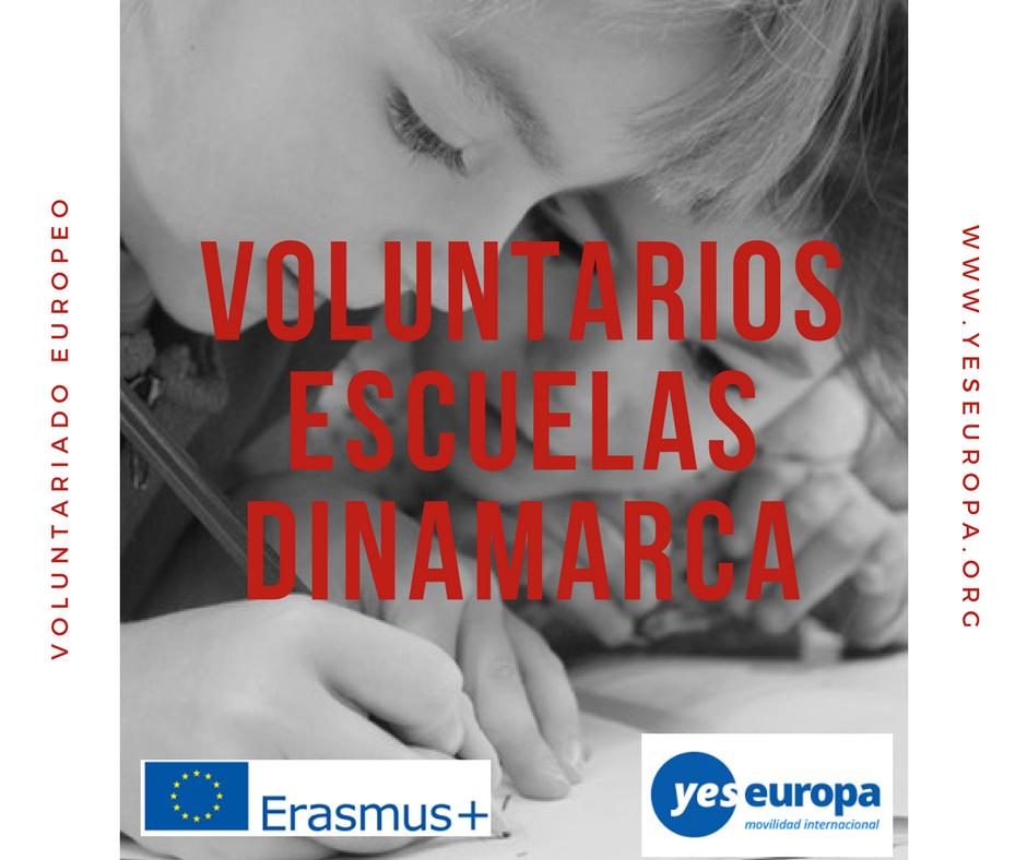 Voluntarios escuelas Dinamarca en centro público