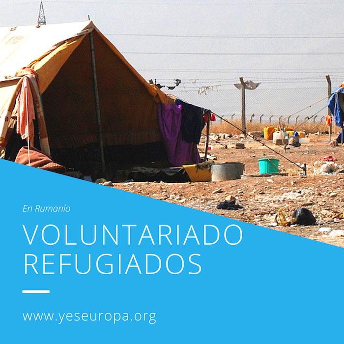 voluntariado refugiados