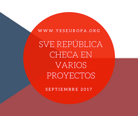 voluntariado republica checa