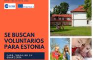 Se buscan voluntarios Estonia en guardería