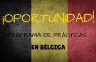 Programa de prácticas remuneradas en Bélgica