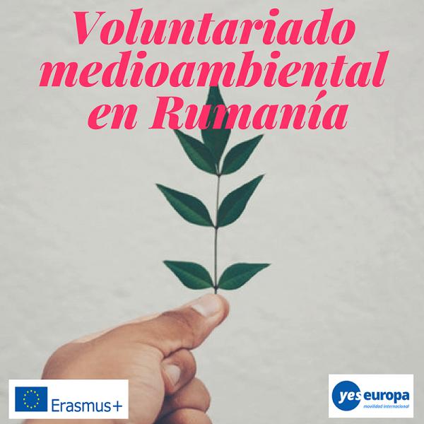 Voluntariado medioambiental Rumanía