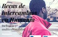 Becas de intercambios en Rumanía sobre interculturalidad e integración