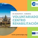 2 meses en Voluntariado Budapest en centro rehabilitación (Hungría)