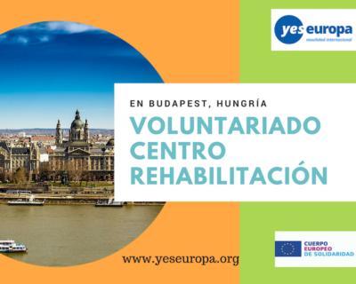 5 meses en Voluntariado Budapest en centro rehabilitación (Hungría)