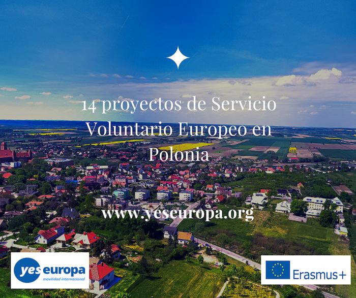 14 proyectos de Voluntario guarderías Polonia