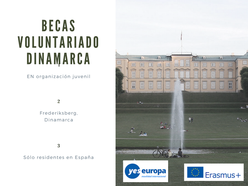 Becas voluntariado dinamarca