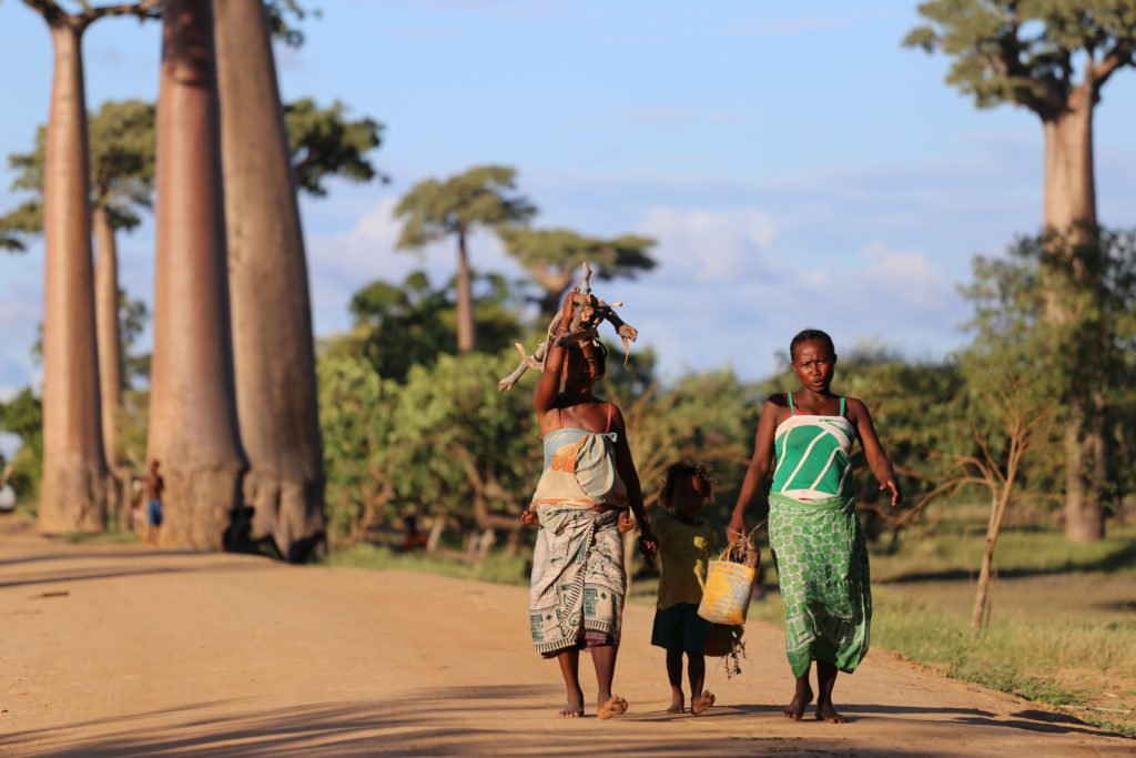 voluntariado mozambique