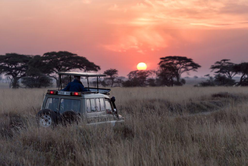 programas voluntariado mozambique