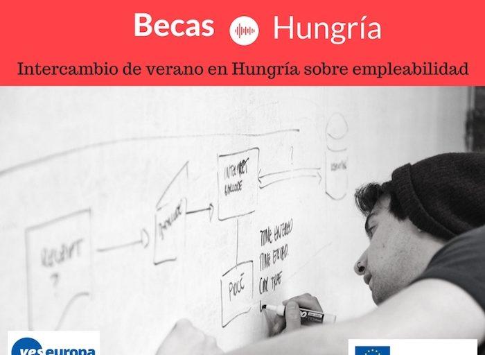 Becas Hungría para aprender a encontrar empleo