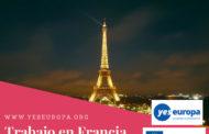 Trabajo en Francia para trabajar en una red europea como Jefe/a de administración en Francia