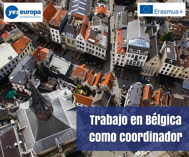 Trabajo en Bélgica como coordinador internacional