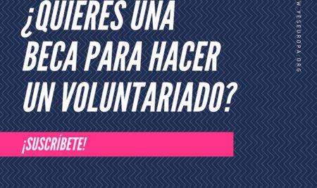 ¿Qué es el voluntariado?: cómo participar