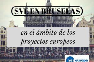 SVE en Bruselas