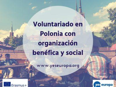 Plazas voluntariado en Polonia con organización benéfica