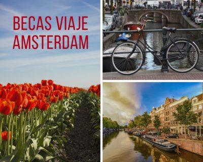 Becas Viaje Amsterdam en creatividad transfronteriza