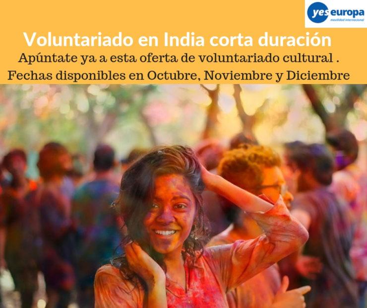 Voluntariado cultural en India