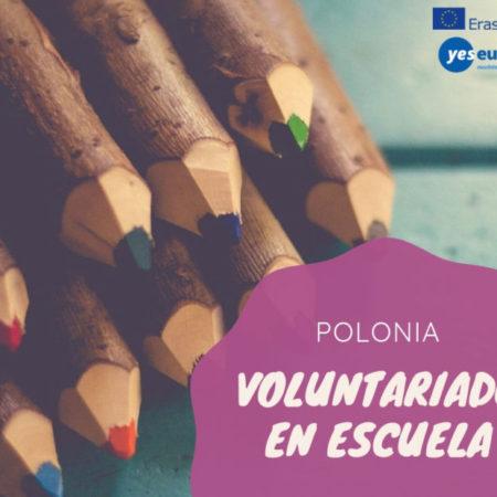 Voluntariado en escuela primaria en Polonia