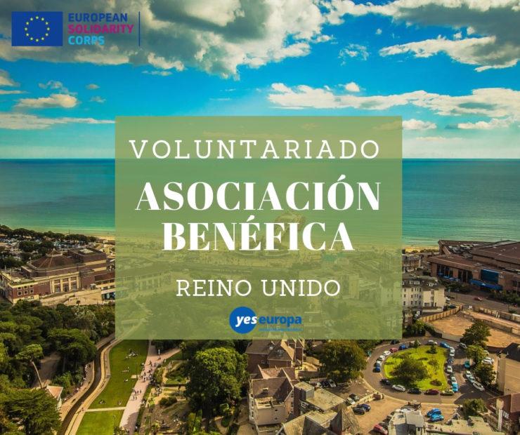 Voluntariado en una asociación benéfica en Reino Unido