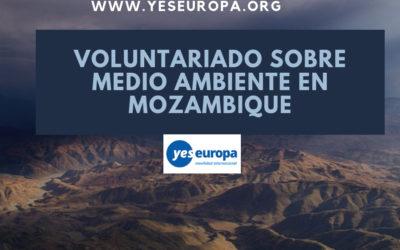 Voluntariado sobre medio ambiente en Mozambique