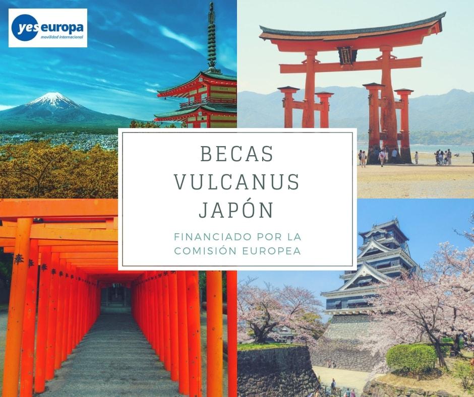 Becas Vulcanus Japón