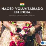 Hacer Voluntariado en agricultura ecológica y guardería en India