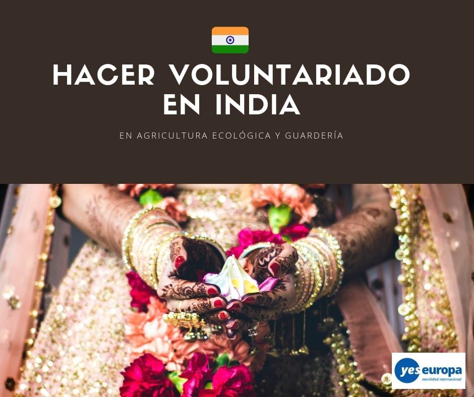 Hacer Voluntariado en India