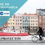 SVE en Dinamarca con 8 proyectos internacionales