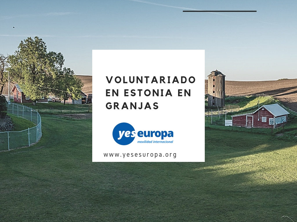 Voluntariado Estonia en granjas