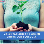 Voluntariado con ecología en Chipre