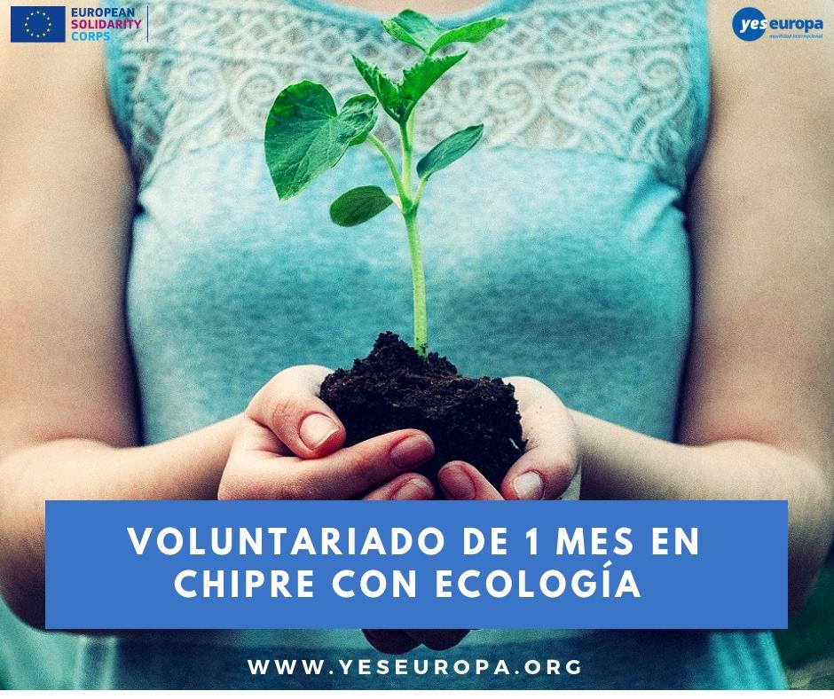 Voluntariado con ecología en Chipre