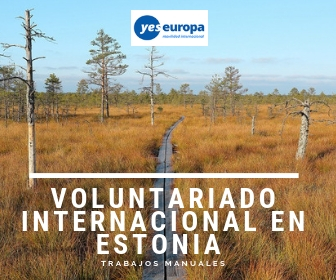 Oferta de Voluntariado internacional Estonia