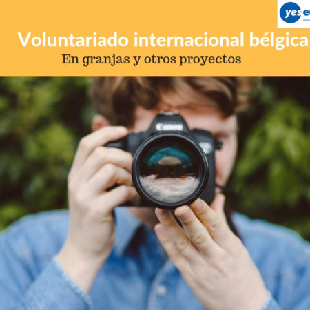 Voluntariado internacional bélgica en granjas