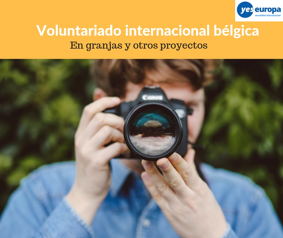 Voluntariado internacional bélgica