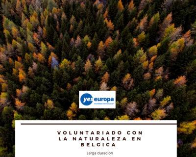 Voluntariado naturaleza en Bélgica
