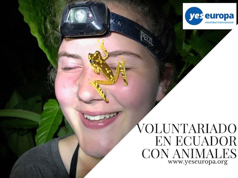voluntariado selva ecuador con animales