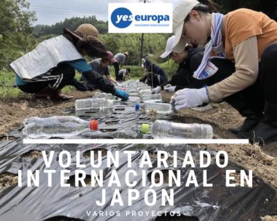 Voluntariado en Japón , plazas 2019 para jóvenes