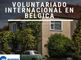 Voluntariado en residencias en Bélgica